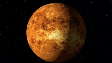 Photo of Second sign of life found on Venus