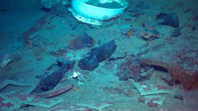 Photo of There may still be human remains inside the Titanic