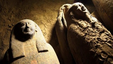 Curse sealed sarcophagi discovered in Egypt decryption appeared