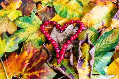 Ordtak om kjærlighet – Samling av flotte og rørende ordtak