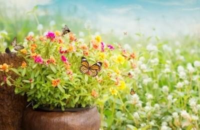 Sitater om livet – Samling av flotte og motiverende sitat
