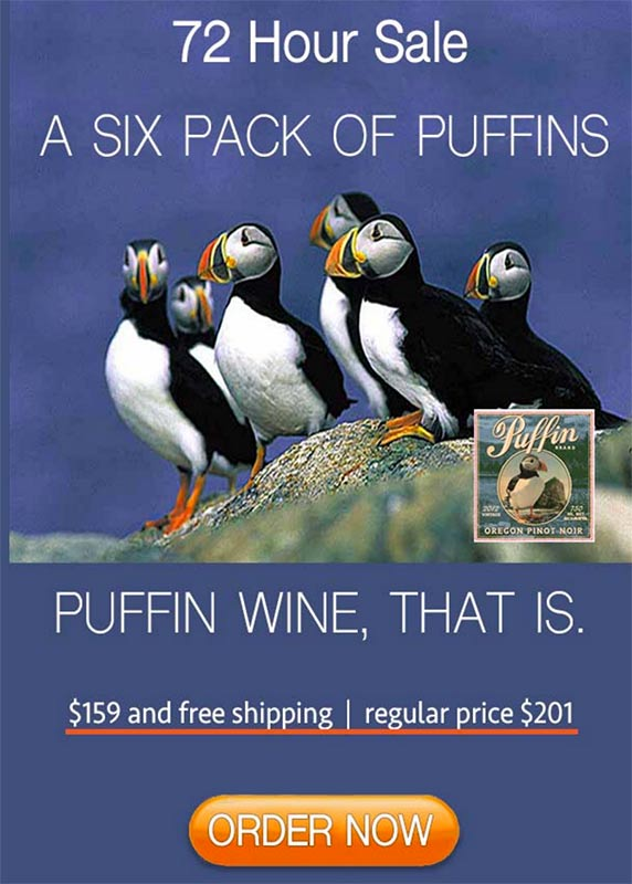 puffin-six-pack-800pheight