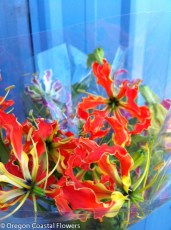 Gloriosa Lily Wedding Bouquet