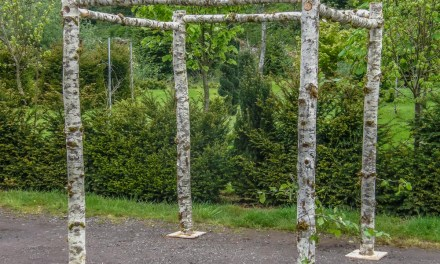 6.15.20 Natural Birch Wedding Chuppah