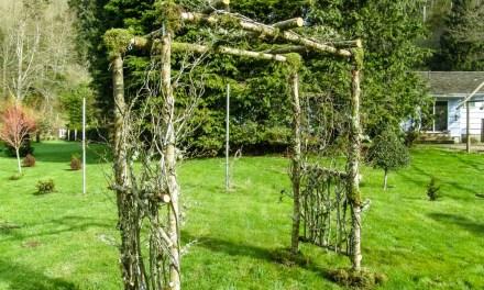 Custom Birch Wedding Arches, Pergolas, and Chuppah.