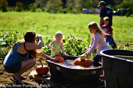 kilchis river pumpkin patch