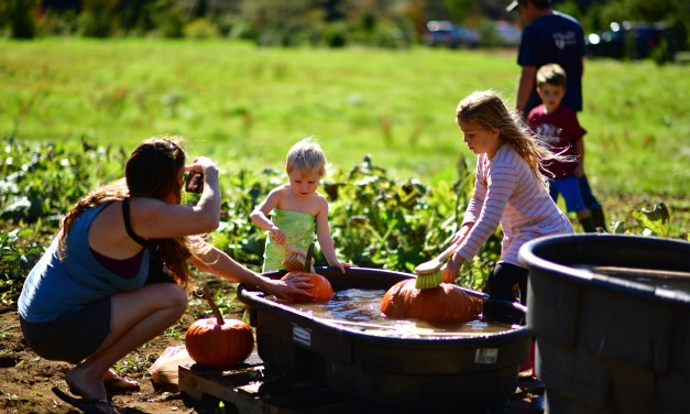 2019 Kilchis River Pumpkin Patch & Corn Maze