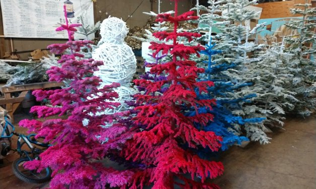Have your Christmas trees professionally flocked by Oregon Coastal Flowers.