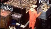 Crabbing Injuries