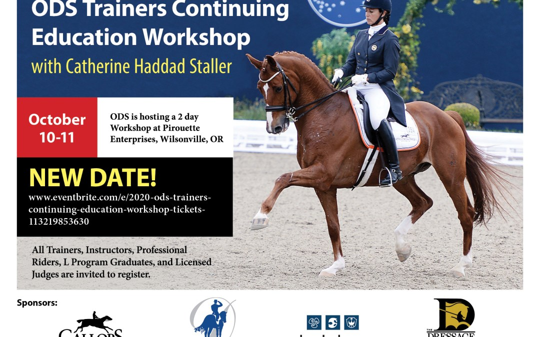 ODS Trainers Workshop with Catherine Haddad Staller