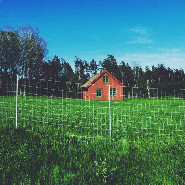Little red farmhouses dot the Swedish countryside