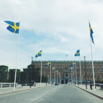 Flags flying for National Day