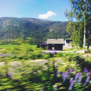 Norway by Rail from Oslo to Flåm via Oregon Girl Around the World