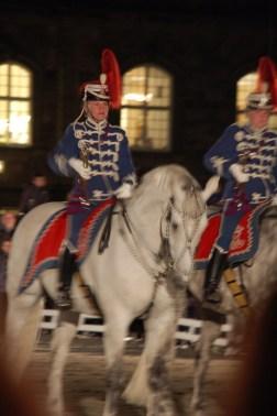 Kulturnatten 2015 Royal Horses at Christiansborg Slot, Copenhagen