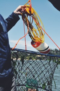 Crabbing on the Central Oregon Coast | Waldport, OR USA | Oregon Girl Around the World