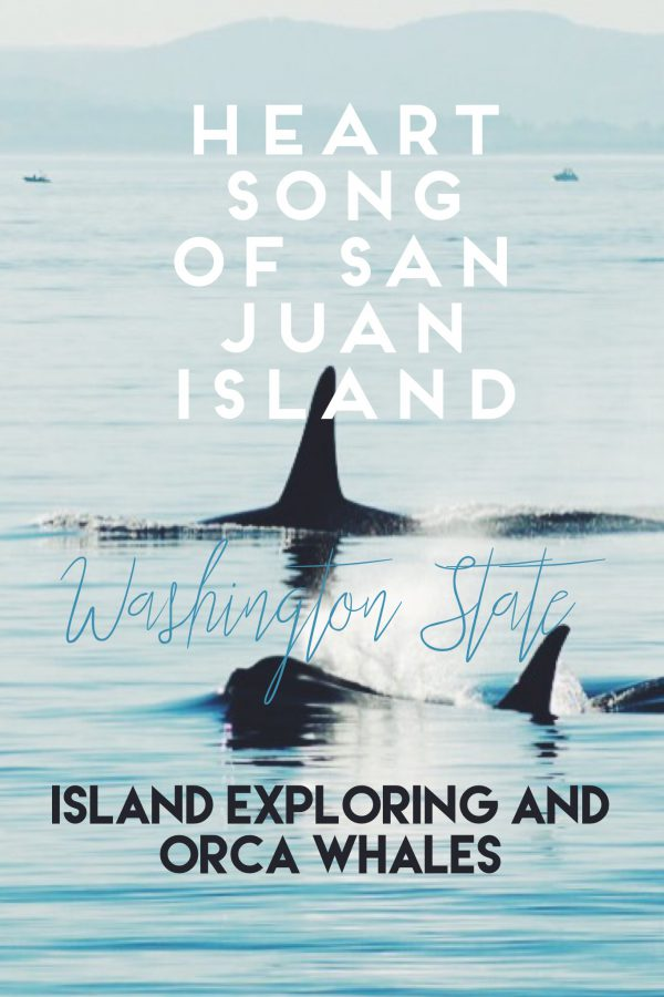 Why everyone should know San Juan Island, Washington