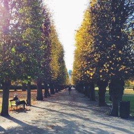 The Kings Garden, Copenhagen colorful for fall