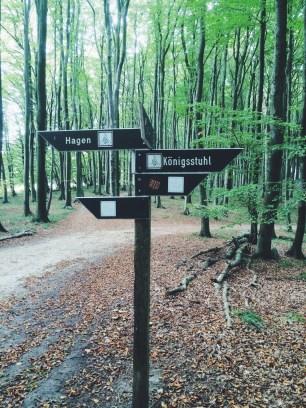 Which way to go - Hike through Jasmund National Park