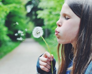 Explore the slow life in Denmark | Gem of the Danish Riviera | Hornbaek Denmark via Oregon Girl Around the World