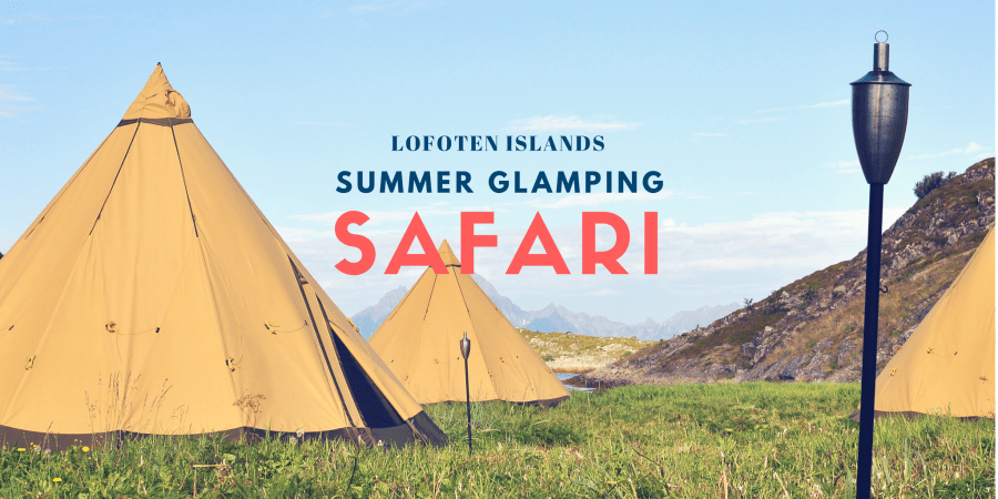 A Summer Glamping Safari Above the Arctic Circle with WildSeas