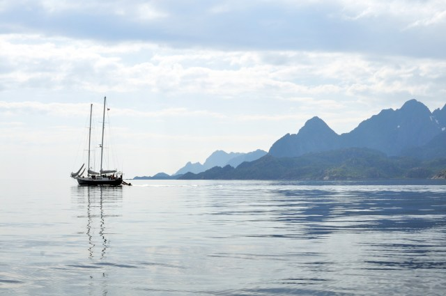 Reasons to Love Summer in The Lofoten Islands | Northern Norway above the Arctic Circle | Oregon Girl Around the World