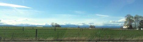 Thundereggs - Richardson Rock Ranch, Madras, Oregon