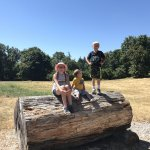 Kids on a giant log at Dorris Ranch