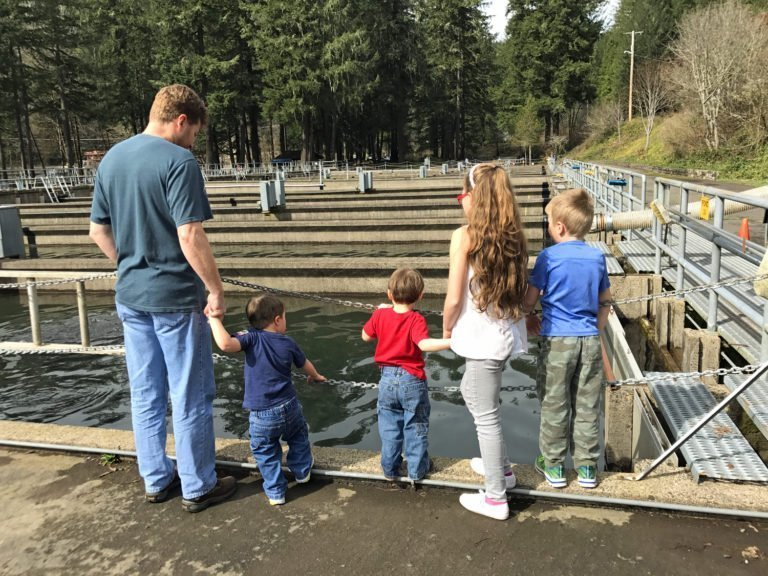 Kids looking into ponds at Leaburg Fish Hatchery in Oregon