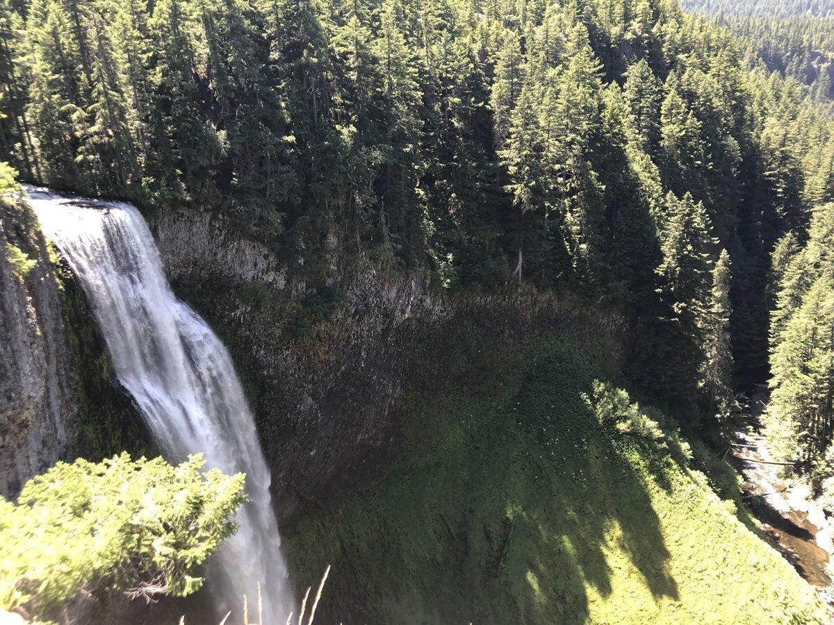 Salt Creek Falls - view from the top