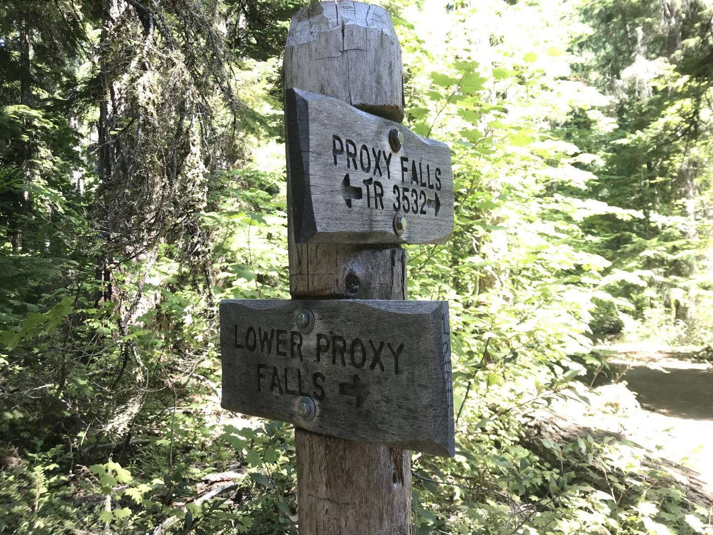 Take the right path to lower proxy falls, take the left path to the upper falls