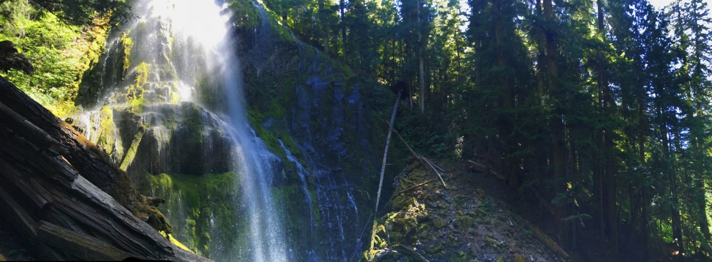 A panorama of Lower Proxy Falls - a 226 foot cascade waterfall. Just over an hour from Eugene, it's the perfect trail for kids: diverse landscape, two waterfalls, and it's only 1.5 miles.
