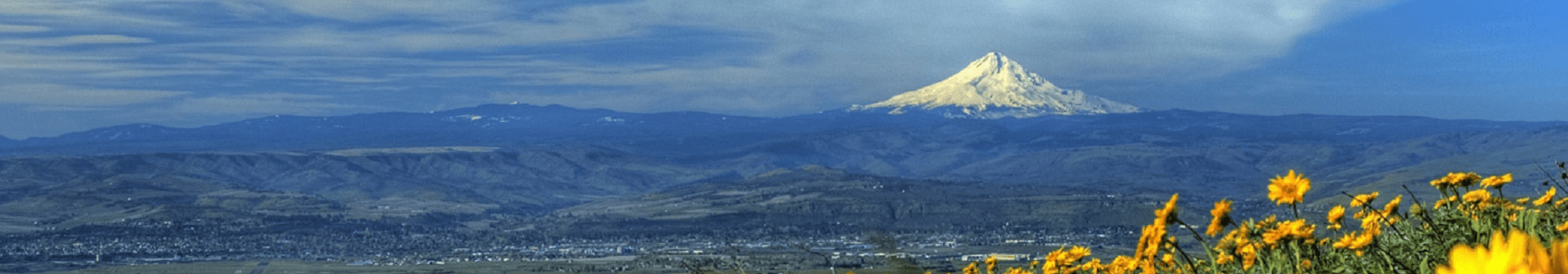 landscape-near-mount-hood-oregon