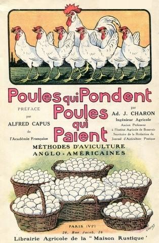 Poules qui pondent, 1927, couverture