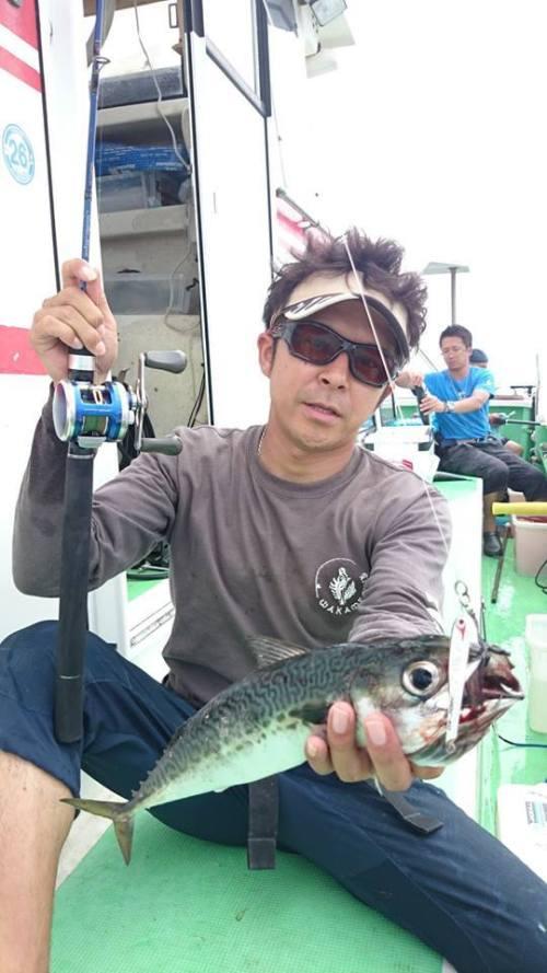 東京湾のトロサバ