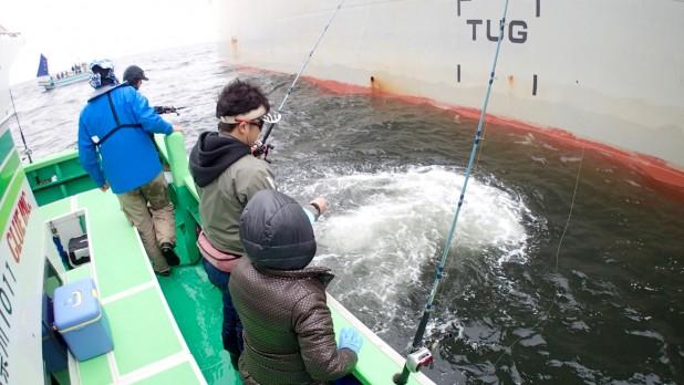 今年も日吉・寅さん主催、寅釣会シーバスジギングに参戦しました