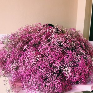 large-gyp-bouquet