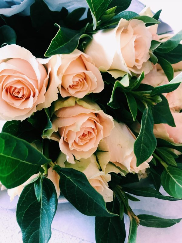 roses-and-greenery