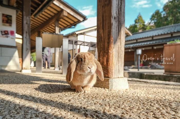 加賀景點 月うさぎの里到處都是萌兔子的月兔之里~免費入場~(可搭加賀周遊巴士到達)