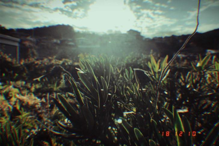 景色 フィルム アプリ