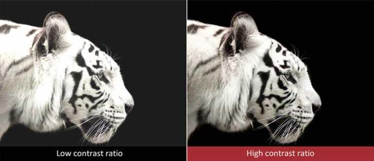 高いネイティブコントラスト比 イメージ