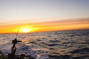 平塚沖で釣り