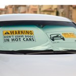 Hot Car Warning for Pets