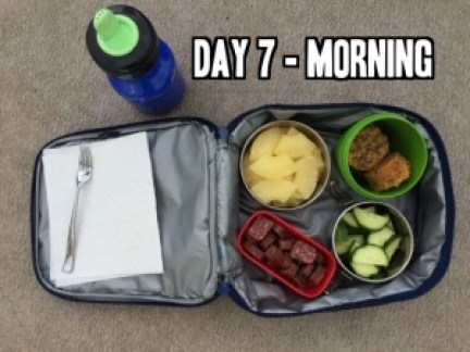 Day 7 school lunch idea