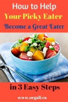 Do you have a little (or a big) picky eater? These 3 easy tips will help you learn how to deal with a picky eater and help them become an amazing eater. Especially number 2.