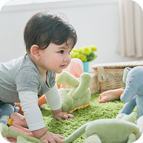 image 05 - Organic Cotton Baby Toys and Gifts Since 2003 | miYim