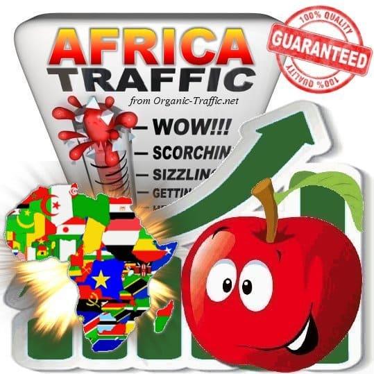 Africa Web Traffic Service