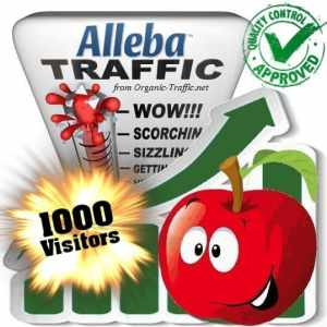 buy 1000 alleba search traffic visitors