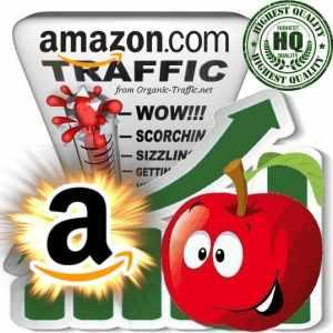 Buy Amazon.com Web Traffic