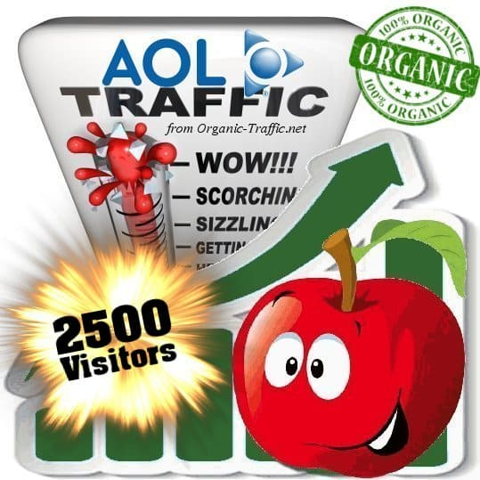 2500 aol organic traffic visitors
