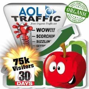 aol organic traffic visitors 30days 75k